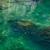 rivière · montagne · nature · paysage · été · vert - photo stock © zastavkin