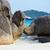 tropische · zee · jacht · eilanden · Thailand · reizen - stockfoto © zastavkin