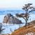 рок · острове · озеро · зима · одиноко · святой - Сток-фото © zastavkin