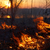 pożar · lasu · lasu · ogromny · ognia · na · północ · Portugalia - zdjęcia stock © zastavkin