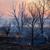 incendies · de · forêt · feu · forêt · arbre · bois · été - photo stock © zastavkin
