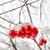 rojo · bayas · cubierto · nieve · panorámica · vista - foto stock © zeffss