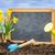 黒板 · 花壇 · 文字 · 庭園 · 花 - ストックフォト © zerbor