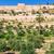 oude · binnenstad · Jeruzalem · stadsgezicht · afbeelding · Israël · koepel - stockfoto © zhukow