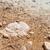 sal · mar · morto · Israel · branco · rochas · água-marinha - foto stock © zhukow