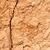 cracked clay ground into the dry season stock photo © zhukow