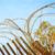 kerítés · borotva · drót · felső · kék · ég · égbolt - stock fotó © zhukow