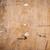 古い紙 · パターン · 家 · デザイン · ホーム · アーキテクチャ - ストックフォト © zhukow