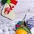 christmas · sneeuw · decoraties · groene · leuk · geschenk - stockfoto © zia_shusha