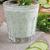drink from cucumber stock photo © zia_shusha