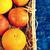 egész · szeletel · narancsok · friss · fél · szelet - stock fotó © zia_shusha