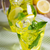 mojito · koeling · drinken · mint · rum · water - stockfoto © zia_shusha