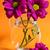 violeta · crisantemo · flor · superior · vista · aislado - foto stock © zia_shusha