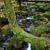 nehir · çağlayan · park · kuzey · ülke · köprü - stok fotoğraf © zittto
