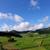 農村 · 道路 · フィールド · 車 - ストックフォト © zittto