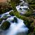 köprü · sessiz · dere · düşmek · nehir · Minnesota - stok fotoğraf © zittto