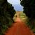 dolinie · krajobraz · chmury · polnej · charakter · niebieski - zdjęcia stock © zittto