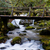çağlayan · park · kuzey · ülke · nehir · hayat - stok fotoğraf © zittto
