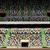 stadium stock photo © zittto
