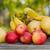 wybór · cytrus · owoce · pomarańczowy · krwi · pomarańcze - zdjęcia stock © zittto