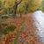 autunno · fiume · pietre · veloce · rocce - foto d'archivio © zittto