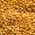 uncooked indian dhal lentil ood background stock photo © zkruger