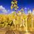 oleju · warzyw · butelek · szkła · tabeli · wiosną - zdjęcia stock © zolnierek