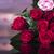Roses stock photo © zolnierek