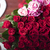 specjalny · dzień · bukiet · róż · kształt · serca · polu - zdjęcia stock © zolnierek