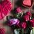 dzień · czerwony · serca · róż · drewniany · stół · tekstury - zdjęcia stock © zolnierek