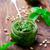 pesztó · mártás · zöld · üveg · bögre · hozzávalók - stock fotó © zoryanchik