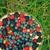 slagroom · cake · bessen · kleurrijk · gestreept · exemplaar · ruimte - stockfoto © zoryanchik