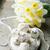 mexican · ślub · słodkie · cookie · cookie · brązowy - zdjęcia stock © zoryanchik