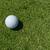 vibráló · zöld · golfpálya · kép · felhők · golf - stock fotó © zurijeta