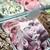 gelato · sandwich · vaniglia · cookie · bar · alimentare - foto d'archivio © zurijeta