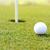 мяч · для · гольфа · дыра · травой · поле · зеленая · трава · области · трава - Сток-фото © zurijeta