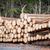 drogen · gehakt · brandhout · klaar · winter · boom - stockfoto © zurijeta