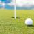 pallina · da · golf · erba · cielo · blu · sport · natura · panorama - foto d'archivio © zurijeta