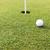 мяч · для · гольфа · белый · гольф · зеленая · трава · гольф - Сток-фото © zurijeta