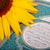 carta · parole · religione · storia · fiore · spazio - foto d'archivio © zurijeta