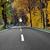 uzun · karayolu · orman · manzaralı · bereketli · yeşil - stok fotoğraf © zurijeta