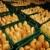 bread making in factory stock photo © zurijeta