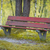 oude · zomer · park · boom · textuur · bos - stockfoto © zurijeta