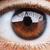 マクロ · クローズアップ · ショット · 人間 · 眼 · 極端な - ストックフォト © zurijeta