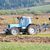 tractor on field and cows behind stock photo © zurijeta